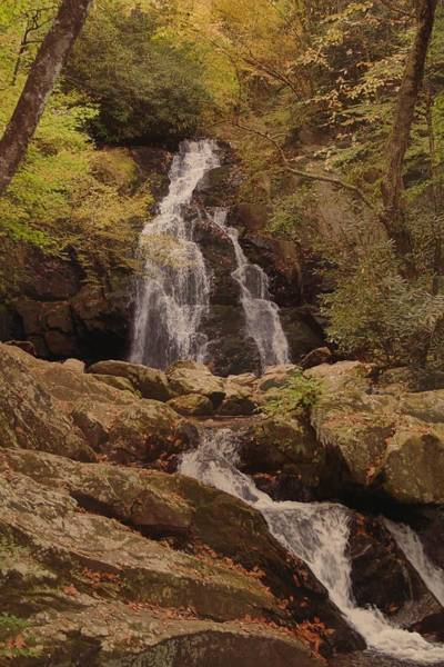 Photograph - Autumn Waterfall In The Great Smoky Mountains by Dan Sproul