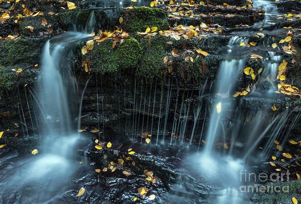 Wall Art - Photograph - Autumn Waterfall by John Greim