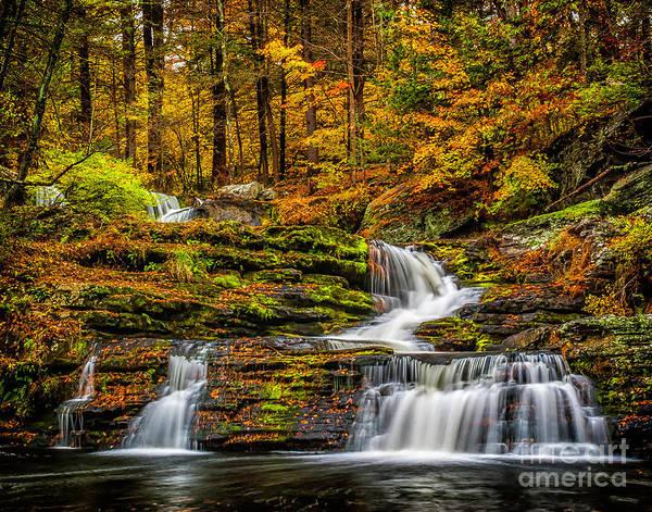 Photograph - Autumn Waterfall by Nick Zelinsky