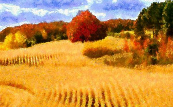 Digital Art - Autumn Wheat Field by Caito Junqueira