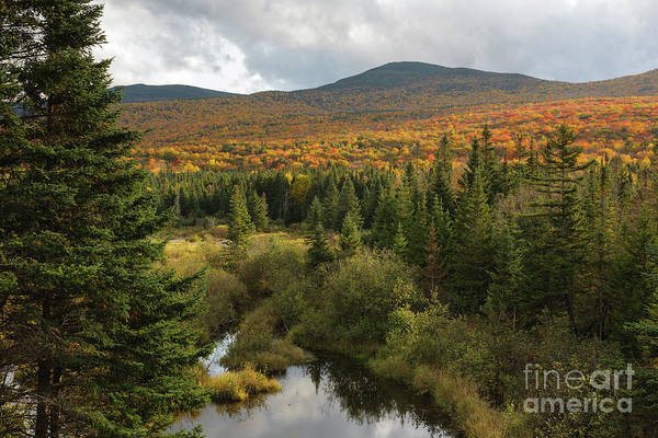Photograph - Autumn - White Mountains New Hampshire by Erin Paul Donovan