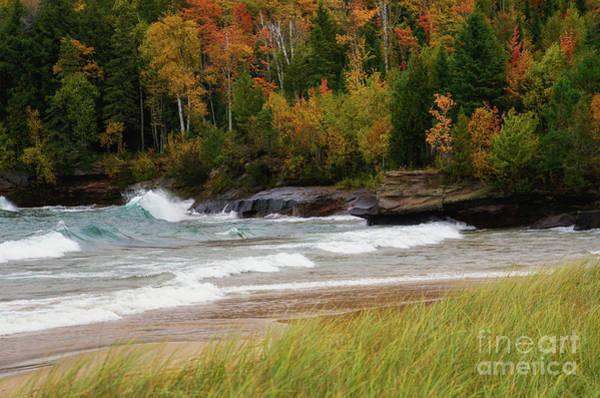 Photograph - Autumn Winds And Color by Rachel Cohen
