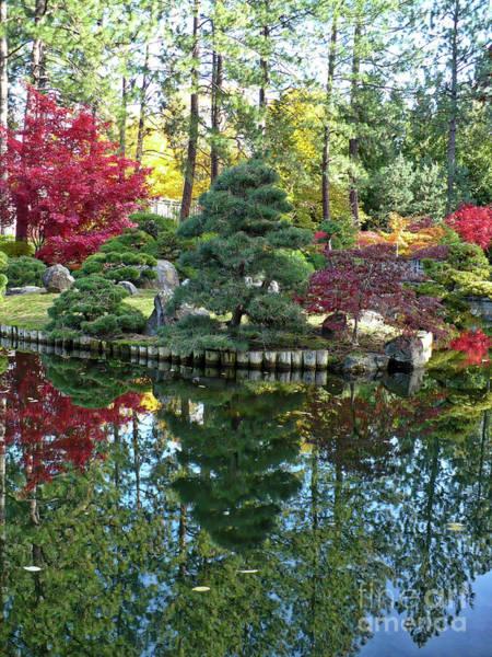 Manito Park Spokane Photograph - Autumn Wonderland Hdr by Carol Groenen