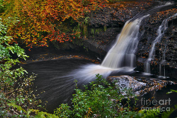 Photograph - Autumn Woodland Waterfall by Martyn Arnold