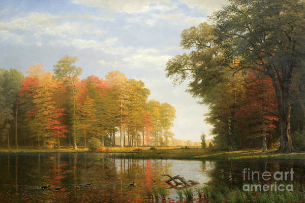 Changing Painting - Autumn Woods by Albert Bierstadt