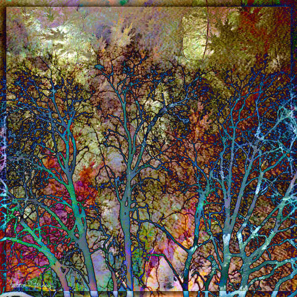Digital Art - Autumn Woods by Barbara Berney