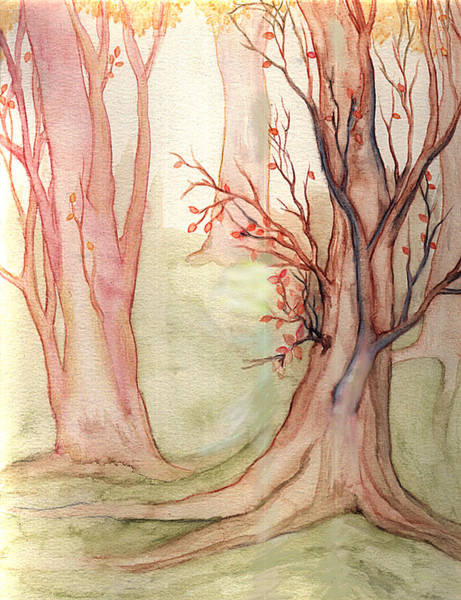 Mist Drawing - Autumn Woods by Rebecca Tripp