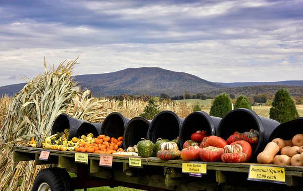 Wall Art - Photograph - Autumnal Abundance In The Blue Ridge Mountains - Virginia by Brendan Reals