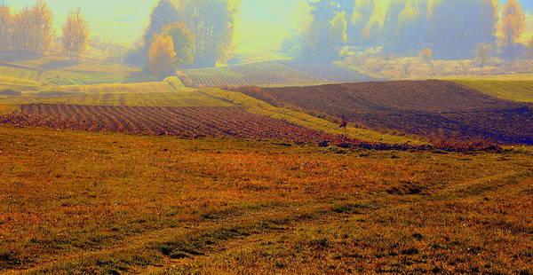 Gorecki Photograph - Autumnal Fogs by Henryk Gorecki