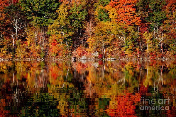 Autumnal Reflections Art Print by Andrea Simon