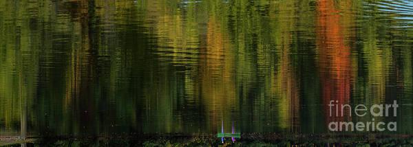 Photograph - Autumnal Reflections by Les Palenik