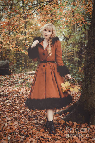 Wall Art - Photograph - Autumnal Woodland by Amanda Elwell