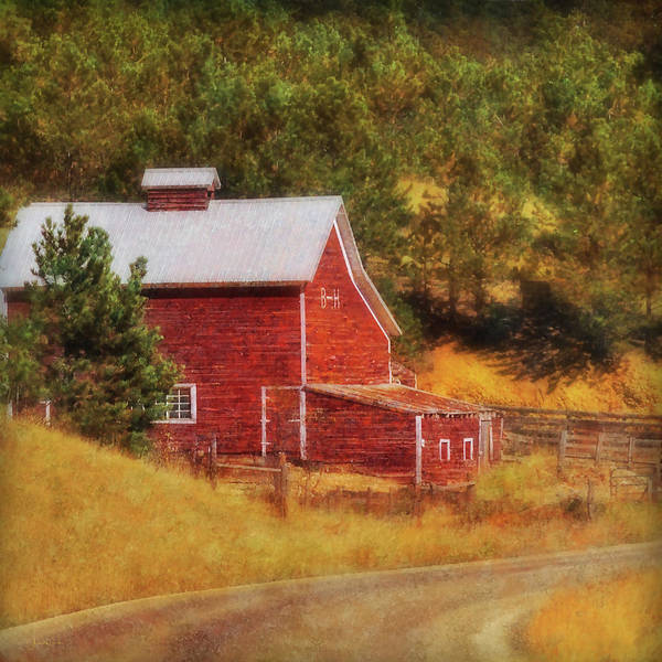 Photograph - Autumn's Black Hills Barn by Amanda Smith
