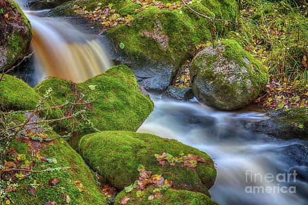 Salo Wall Art - Photograph - Autumn's Creek 2 by Veikko Suikkanen