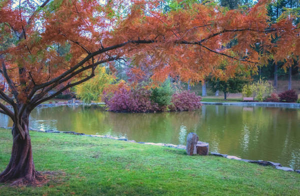 Photograph - Autumn's Embrace by Harold Coleman