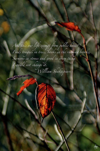 Photograph - Autumns Last Dance Shakespeare Quote Print by Wayne King