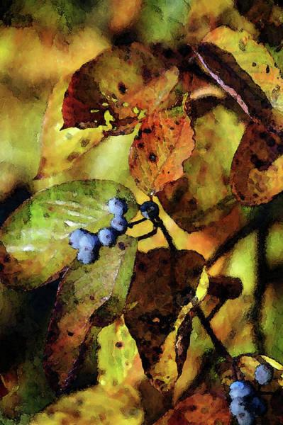 Photograph - Autumns Lasting Impression 6042 Idp_2 by Steven Ward