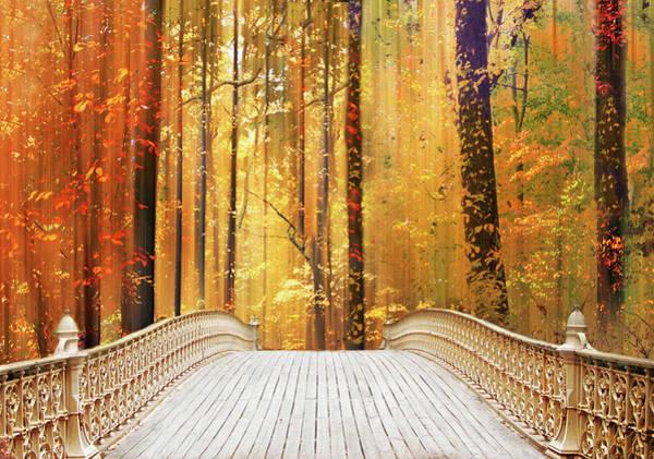 Footbridge Photograph - Autumn's Offering by Jessica Jenney