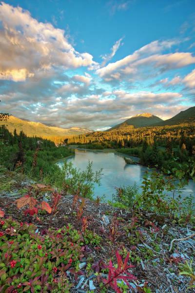 Photograph - Autumn's Presence by Ed Boudreau