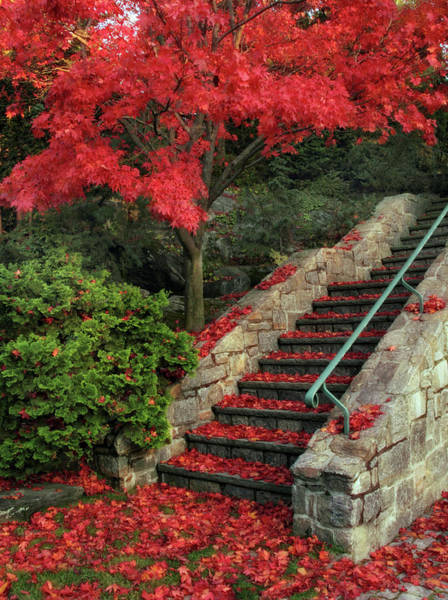 Stairs Wall Art - Photograph - Autumn's Remains by Jessica Jenney