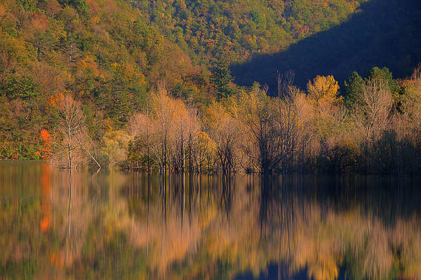 Photograph - Autunno In Liguria - Autumn In Liguria 1 by Enrico Pelos