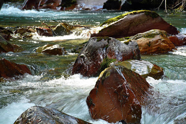 Photograph - Avalanche Creek Cascade 03 by Bruce Gourley