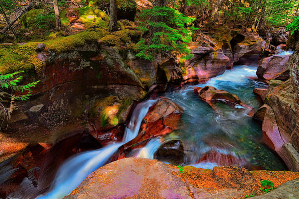 Photograph - Avalanche Creek by Greg Norrell