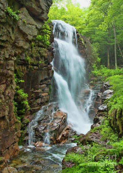 Photograph - Avalanche Falls  by Alana Ranney