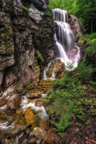 Franconia Notch State Park Photograph - Avalanche Falls - Flume Gorge - Franconia Notch by Jeff Bazinet