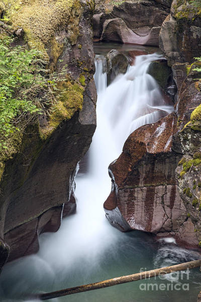Photograph - Avalanche Gorge by Jemmy Archer