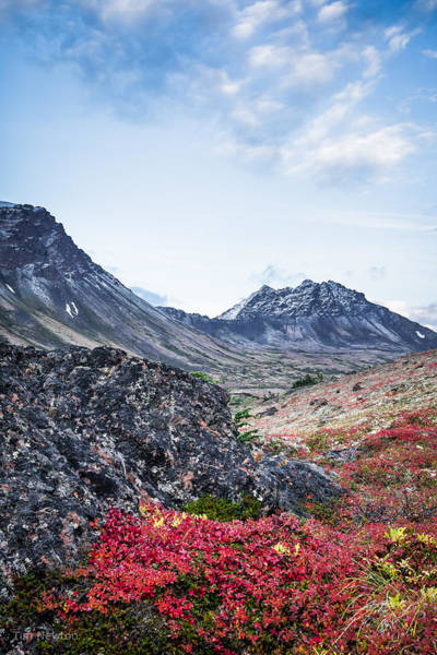 Photograph - Avalanche Mountain In Autumn 1 by Tim Newton
