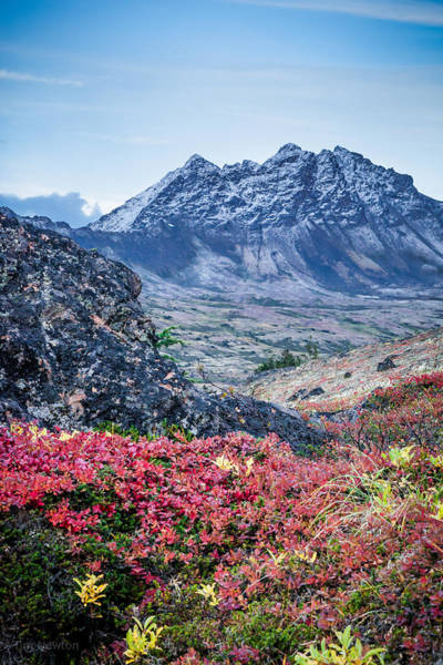 Photograph - Avalanche Mountain In Autumn 2 by Tim Newton