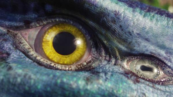 Animal Digital Art - Avatar by Maye Loeser