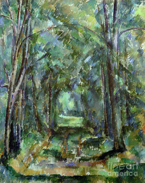 Tunnel Painting - Avenue At Chantilly by Paul Cezanne