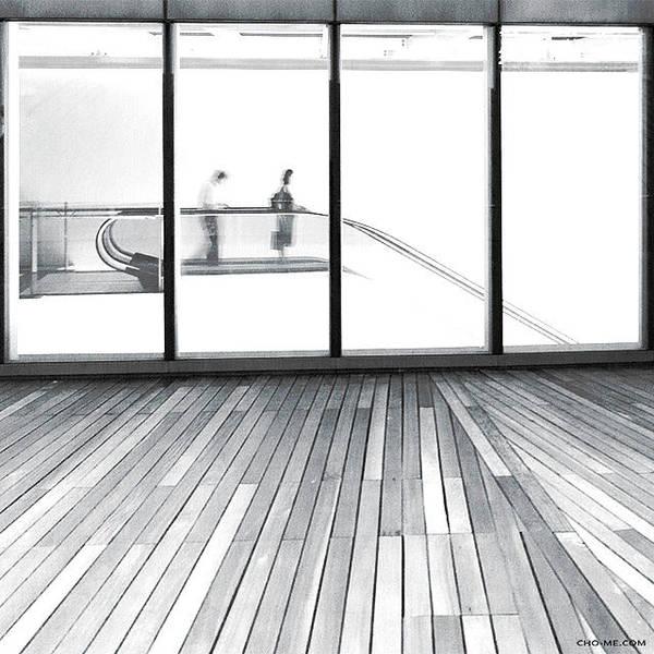 Photograph - Avenue by Cho Me