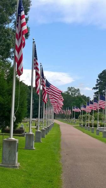 Wall Art - Photograph - Avenue Of Flags  by Gayle Miller