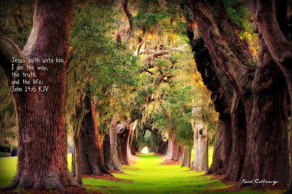 Photograph - Avenue Of Oaks 2 I Am The Way by Reid Callaway