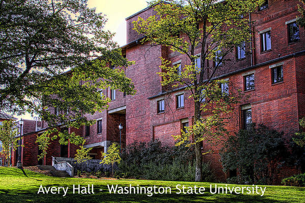 Photograph - Avery Hall 3a1 by David Patterson