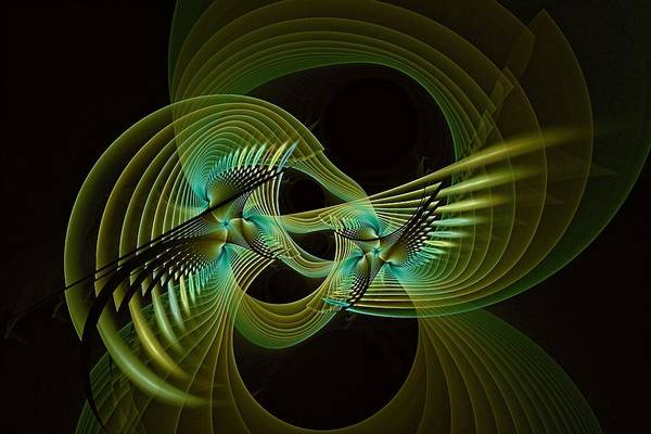 Digital Art - Aviary Night Fight-2 by Doug Morgan