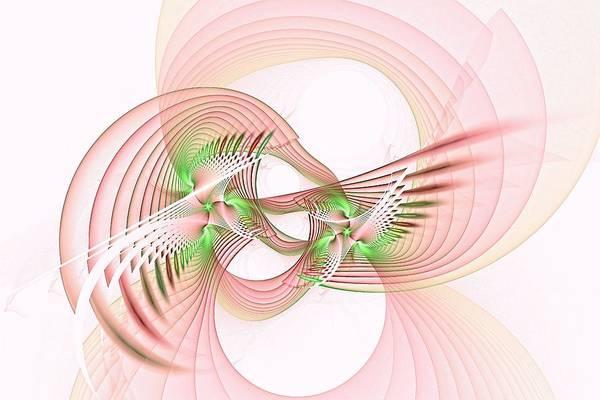 Digital Art - Aviary Rose by Doug Morgan