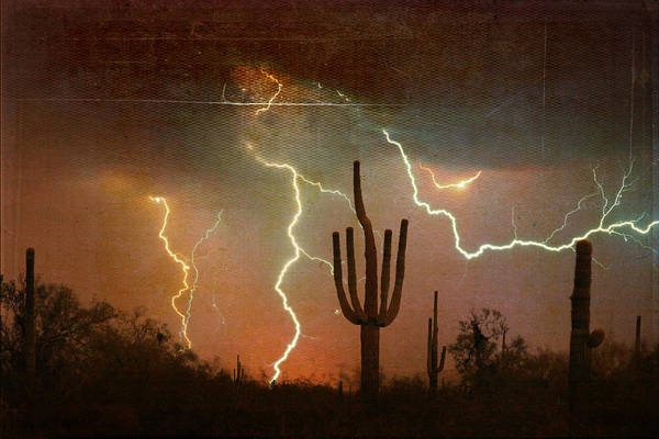 Photograph - Az Saguaro Lightning Storm by James BO Insogna