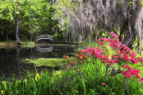 Photograph - Azalea Lake Bridge by Ken Barrett