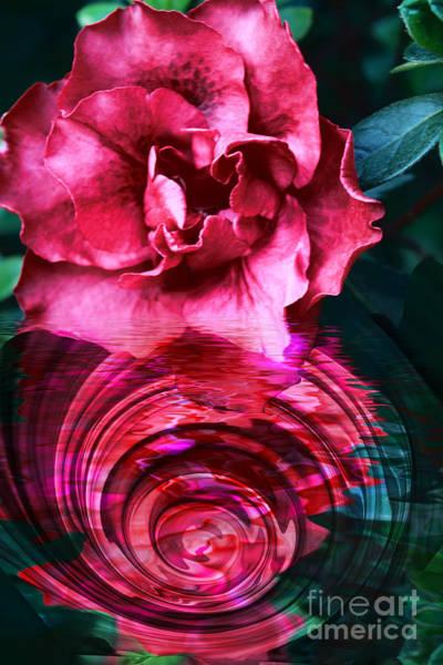 Photograph - Azalea Reflection by Elaine Teague
