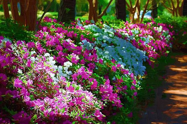 Photograph - Azalea Row by Donna Bentley