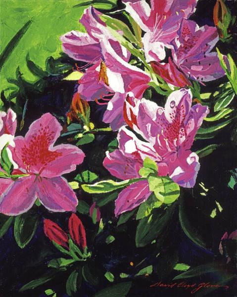 Painting - Azaleas With Dew Drop by David Lloyd Glover