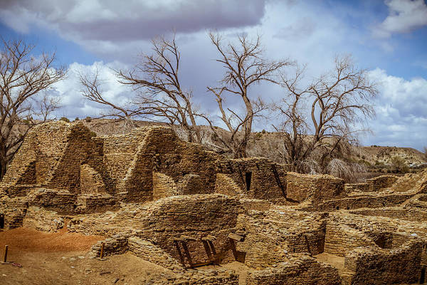 Photograph - Aztec Ruins, New Mexico by Ron Pate