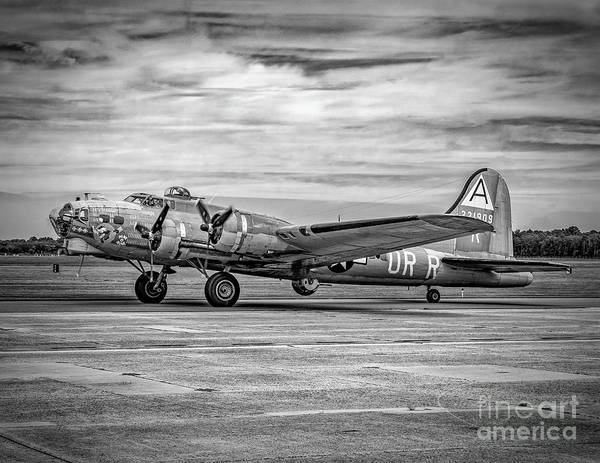 Photograph - B-17 On The Runway by Nick Zelinsky
