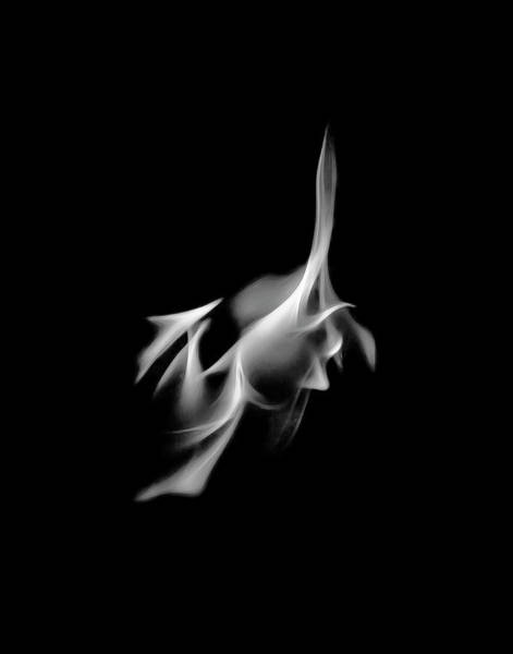 Photograph - B/w Flame 4630 by Wes Jimerson