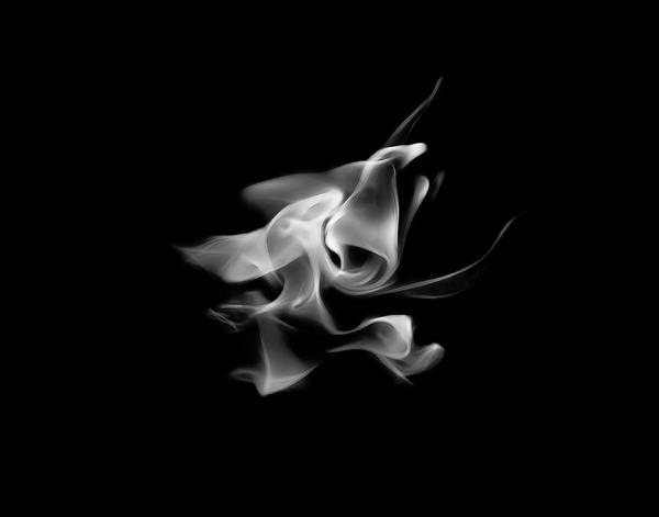 Photograph - B/w Flame 5289 by Wes Jimerson