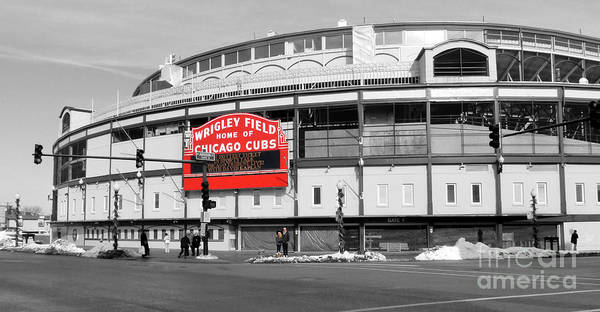 Field Photograph - B-w Wrigley 100 Years Young by David Bearden